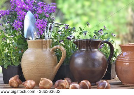 Gardening Tools In A Water Jug Placed With Others On A Table With Flowers And Bulbs In Garden