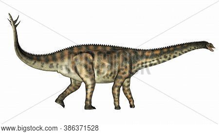 Spinophorosaurus Dinosaur Walking Isolated In White Background - 3d Render