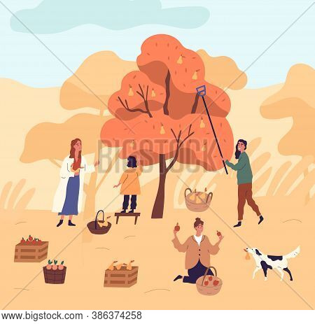 Group Of Women And Kid Picking Pears From Tree At Garden Vector Flat Illustration. Funny Female Duri