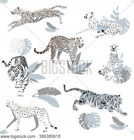 Vector Seamless Pattern With Predatory Wild Cats, Tigers, Leopards, Cheetahs. For The Design Of Post