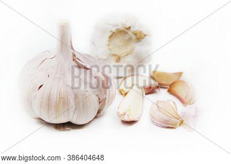 Organic Garlic. Fresh Garlic Cloves And Garlic Bulb Isolated On A White Background. Garlic For Healt