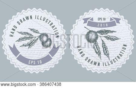 Monochrome Labels Design With Illustration Of Chestnut Stock Illustration