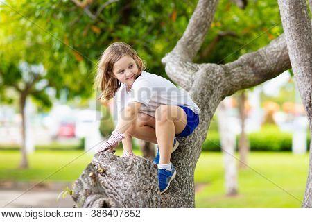 Kids Climb Tree In Summer Park. Child Climbing.