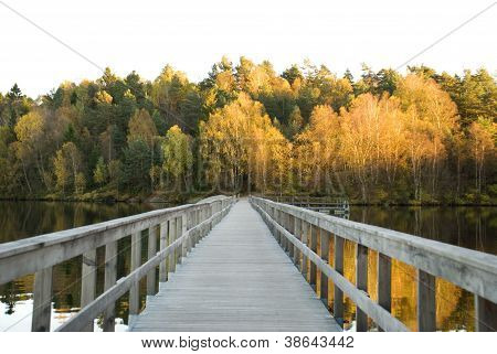 Path Over A Lake In Autumn