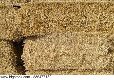 The Texture Of Dry Straw In Rectangular Bales. Close-up Of Rectangular Bales Of Straw. Natural Multi