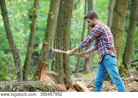 Working Hard. Firewood At The Campsite. Camping And Hiking. Outdoor Activity. Strong Man With Ax. Wo