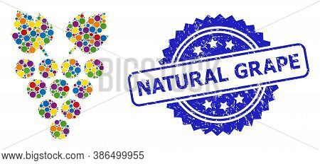 Multicolored Mosaic Grape, And Natural Grape Unclean Rosette Stamp Seal. Blue Seal Includes Natural
