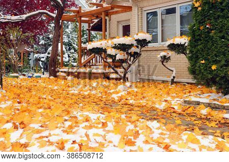 Early Snow Background, Climate Changing Concept. Scenic Morning Landscape With Autumn Bright Color T