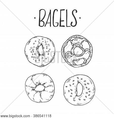 Hand Drawn Vector Illustration Of Bagels. Label Lettering With Space For Text. Fast Food Menu, Cafe