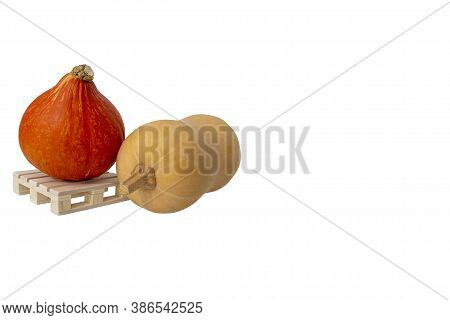 Close Up Of Two Ripe Pumpkins On Wooden Mini Pallet Isolated On White Background With Large Copy Spa