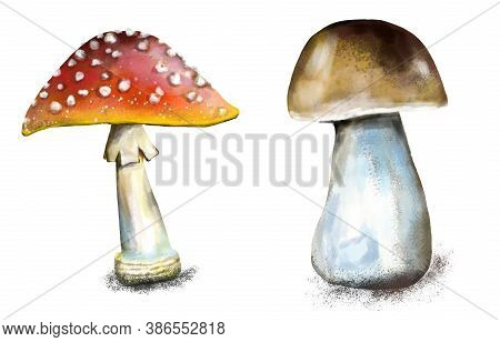 Illustration Of A Poisonous Mushroom Fly Agaric Close-up. Red Hat Of Fly-agaric With White Spots. Is