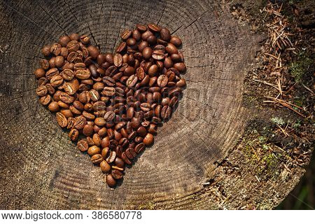 Two Kind Of Coffee Beans On Wooden Old Texture Background. Free Space For Your Text