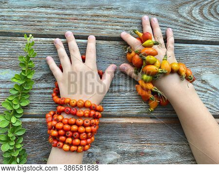 Childrens Creativity Bracelet Made Of Autumn Berries: Rowan Berries And Rose Hips. On Childrens Hand