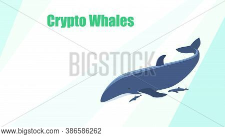 Vector Templates Design For Website With A Cryptocurrency Theme. Bitcoin Crypto Whale. Striped Desig