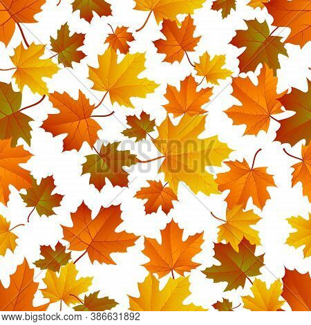 Autumn Leaf Pattern. Fall Leaf Decoration. Autumn Background With Maple Leaf. Vector