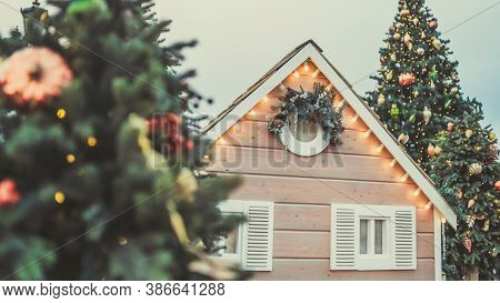 Coniferous Trees With Decorative Adornments Around Lodge To Create Festive Mood During Holiday Celeb
