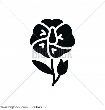 Black Solid Icon For Flax-flower Linseed Wildflower Autumn Ingredient Blooming Natural Flower Botani