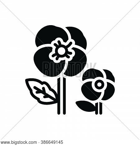 Black Solid Icon For Pansy Ladylike Florist Spring Petals Fragrance Flower Blossom Delicate Decorate
