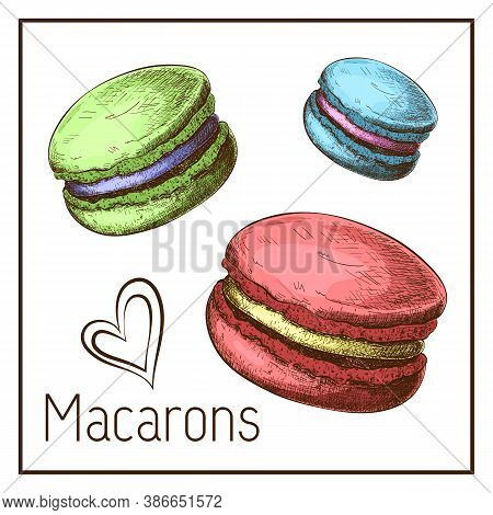 Cute Color Macarons Drawing Isolated On White. Vector Sketch Of Macaroons In Vintage Style. Engraved