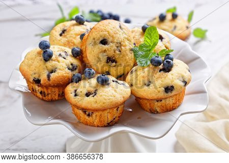 Blueberry Muffins Baked With Fresh Blueberries On A White Cake Stand With Fresh Mint On Top On A Whi