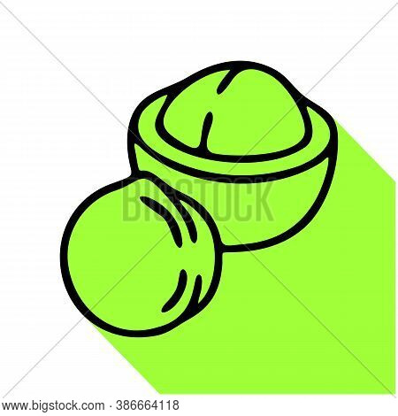 Macadamia Flat Line Icon. Vector Thin Sign Of Nut, Healthy Food Outline Illustration