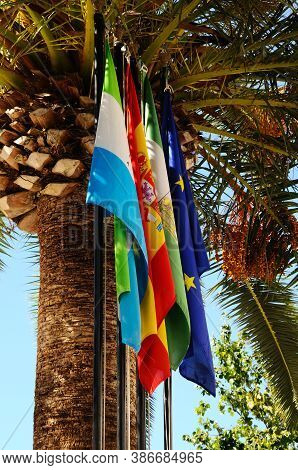 Flags And Palm Tree, Mijas, Costa Del Sol, Malaga Province, Andalucia, Spain, Western Europe.