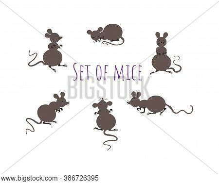 Set Of Mice On A White Background. Mouse In Different Poses In Simple Style. Animal Sketch.