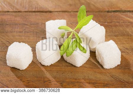 Sugar Cubes And Leaves Of Stevia Plant - Stevia Rebaudiana