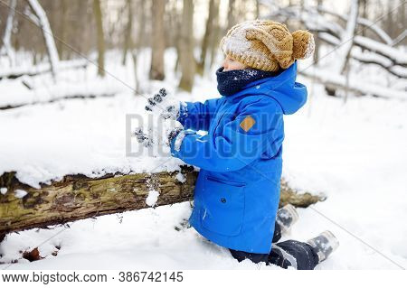 Little Boy Having Fun Playing With Fresh Snow. Kid Dressed In A Warm Clothes, Hat, Hand Gloves And S