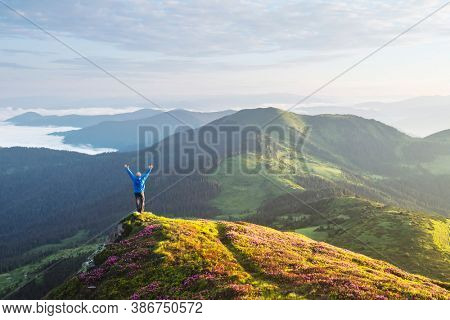 A tourist with raised arms stands on the edge of a cliff covered with a pink carpet of rhododendron flowers. Foggy mountains in the background. Landscape photography