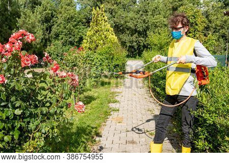 Protecting Flower Plants From Fungal Disease, Gardening Concept