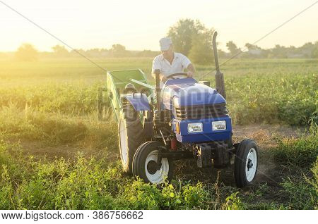 A Farmer On A Tractor Drives Across The Farm Field. Potato Harvest Campaign. Farming, Agriculture. H