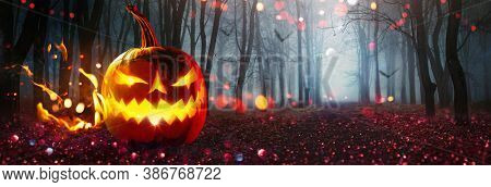 Halloween Pumpkin Glowing In Fantasy Night Forest. Jack O'Lantern Holiday Horror Background. Holiday Party Art Design