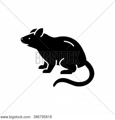 Black Solid Icon For Rat Mouse Beast Domestic Pest Rodent Rattus Gnawer Jerboa Harmful Disease Dange