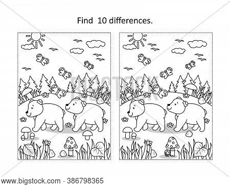 Find 10 Differences Visual Puzzle  And Coloring Page With Two Curious Bear Cubs In Autumn