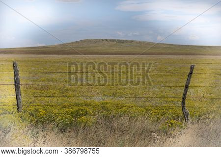 Arizona Rural Countryside Covered By Yellow Rabbit Brush Beyond Rustic Fence.
