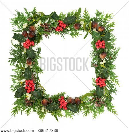 Traditional winter solstice, Christmas & New Year greenery border with holly, ivy, mistletoe, cedar cypress & juniper fir on white background. Festive natural composition. Top view, copy space.