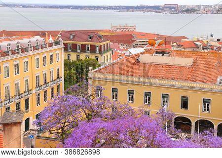 Lisbon Cityscape With Purple Jacaranda Tree In Bloom - Alfama Neighborhood.