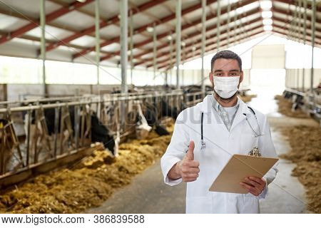 agriculture industry, farming and animal husbandry concept - veterinarian or doctor with clipboard wearing medical mask over herd of cows in cowshed on dairy farm showing thumbs up hand sign