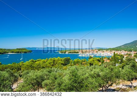 Olive Trees And Panoramic View Of Town Of Cres On The Island Of Cres In Croatia, Beautiful Adriatic