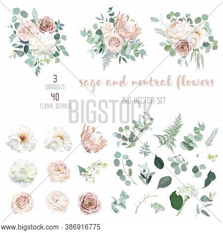Pale Pink Camellia, Dusty Rose, Ivory White Peony, Blush Protea, Nude Pink Ranunculus, Eucalyptus Bi