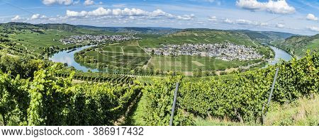Panorama From Moselle Valley With View To Trittenheim In Germany