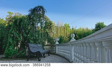 There Is A Bench In The Park, Under The Leaning Green Branches Of A Tree. Wooden Seat, Cast Metal Le
