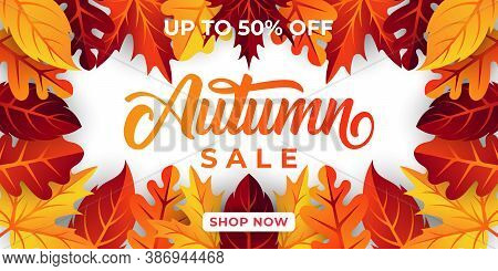 Autumn sale. Autumn sale vector. Autumn sale background. Autumn sale illustration. Autumn sale design. Autumn season sale. Autumn sale template. Autumn sale vector background. Autumn sale vector for background, banner, poster, flyer template