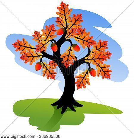 Colored Tree. Vivid Autumn Tree. Red Oak Tree With Colorful Yellow Orange Leaves. Vector Illustratio