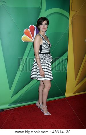 LOS ANGELES - JUL 27:  Megan Boone at the NBC TCA Summer Press Tour 2013 at the Beverly Hilton Hotel on July 27, 2013 in Beverly Hills, CA