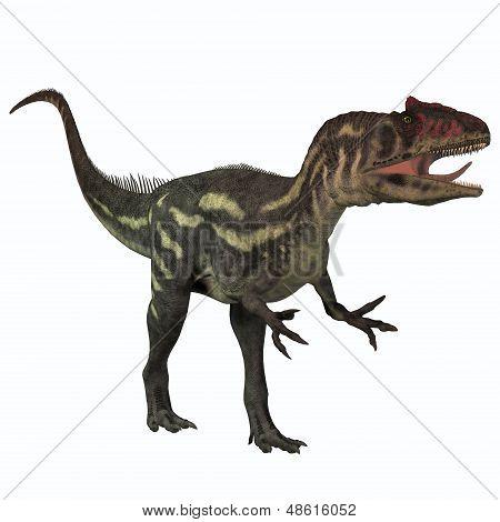 Allosaurus On White