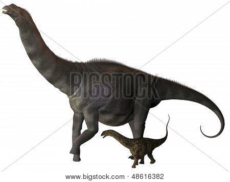Argentinosaurus And Juvenile Profile