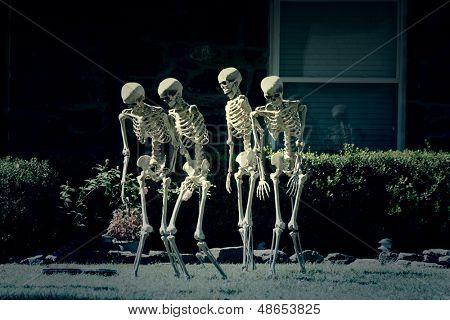 Walking skeletons