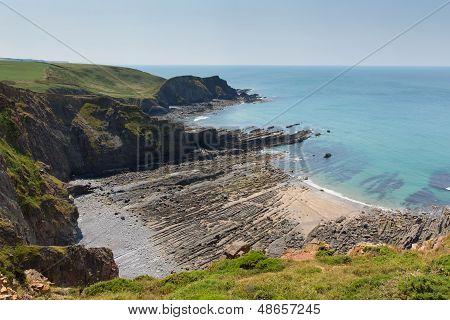 Rock strata on rocky beach